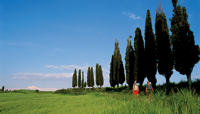 Wctq-tuscany-walking-4